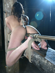 Xxx bondage. Dana DeArmond does intense - Unique Bondage - Pic 2