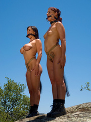Bdsm xxx. Pony Girl sluts trained to serve - Unique Bondage - Pic 4