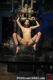 Sexy housewife abuse - Unique Bondage - Pic 11