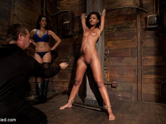 Skin is bound to a beam and a back breaker - Unique Bondage - Pic 3