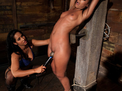 Skin is bound to a beam and a back breaker - Unique Bondage - Pic 4