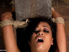Skin is bound to a beam and a back breaker - Unique Bondage - Pic 10