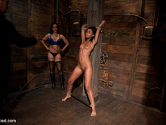 Skin is bound to a beam and a back breaker - Unique Bondage - Pic 12