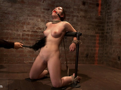 Serena Blair is a local girl next door type - Unique Bondage - Pic 5