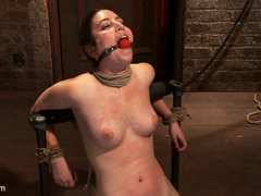 Serena Blair is a local girl next door type - Unique Bondage - Pic 6