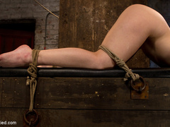Girl next door bound ass up.  Double - Unique Bondage - Pic 4