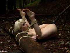 The Dig: A fantasy BDSM abduction horror - Unique Bondage - Pic 7