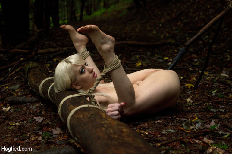 The Dig: A fantasy BDSM abduction horror - Unique Bondage - Pic 7