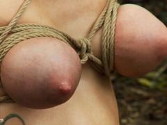 The Dig: A fantasy BDSM abduction horror - Unique Bondage - Pic 13