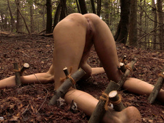 The Dig: The conclusion, A BDSM Abduction - Unique Bondage - Pic 12