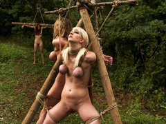 The Dig: The conclusion, A BDSM Abduction - Unique Bondage - Pic 13