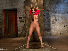 The sexy Amy Brooke .  Elbows bound, pulled - Unique Bondage - Pic 10