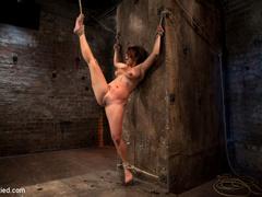 Hot Flexible Asian with big tits, has her - Unique Bondage - Pic 1