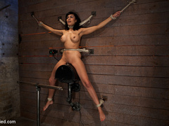 Cougar w/huge nipples stuck in a double - Unique Bondage - Pic 1