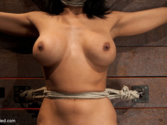 Cougar w/huge nipples stuck in a double - Unique Bondage - Pic 4