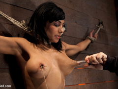 Cougar w/huge nipples stuck in a double - Unique Bondage - Pic 6