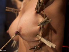 Cougar w/huge nipples stuck in a double - Unique Bondage - Pic 8
