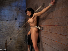 Cougar w/huge nipples stuck in a double - Unique Bondage - Pic 10