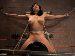 Cougar w/huge nipples stuck in a double - Unique Bondage - Pic 12