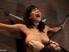 Cougar w/huge nipples stuck in a double - Unique Bondage - Pic 13