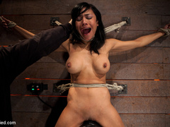 Cougar w/huge nipples stuck in a double - Unique Bondage - Pic 14