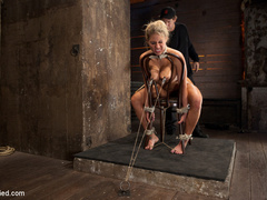 Smoking hot blond with huge tits, a perfect - Unique Bondage - Pic 5