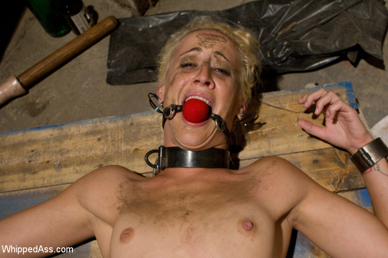Curious blonde finds a pussy in a glory hole - Unique Bondage - Pic 7