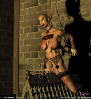 Bondage art. Slave girl hanged and her pussi is tortured by the chain!